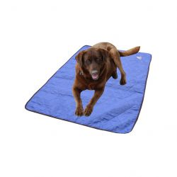 Tapis rafraîchissant pour chien Hyperkewl