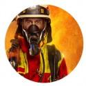 Résistance au feu