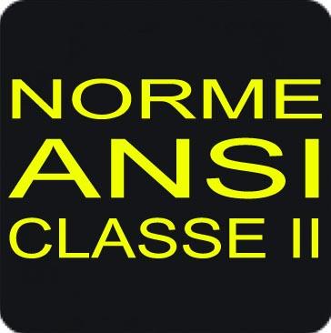 ANSI Classe II