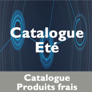 Catalogue Techniche