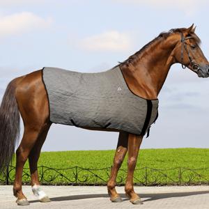 Techniche rafraîchissant cheval