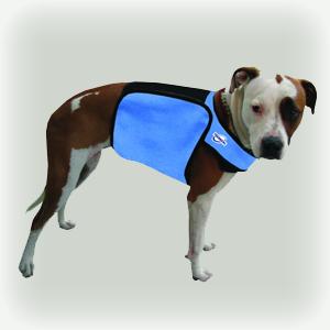 Techniche rafraîchissant chien